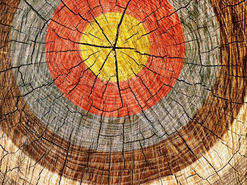 A cross section of a tree with grungy looking target painted on it.